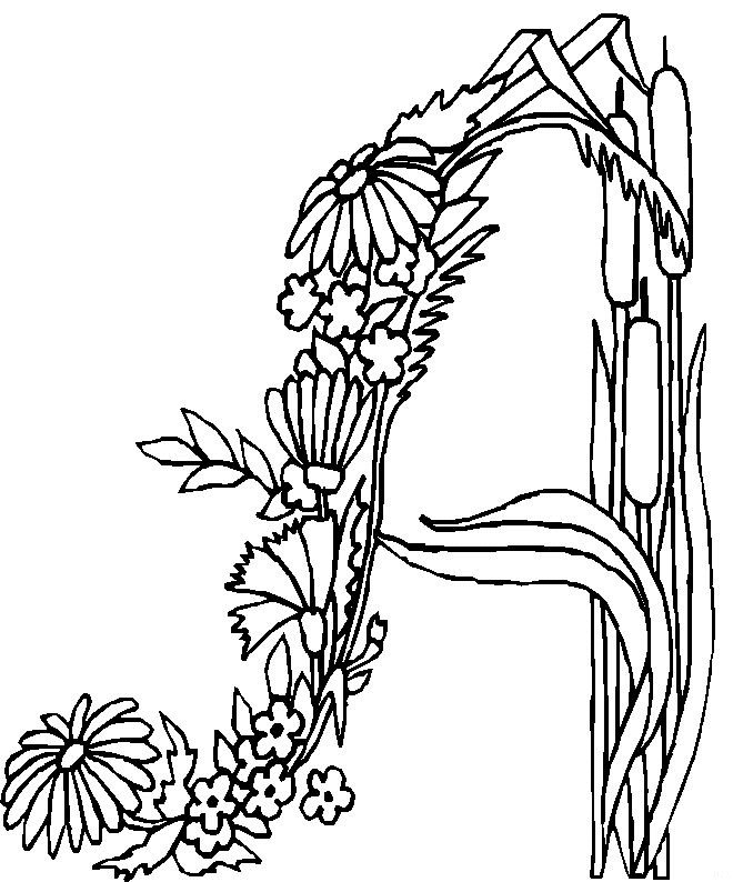 flower alphabet coloring pages - photo#19