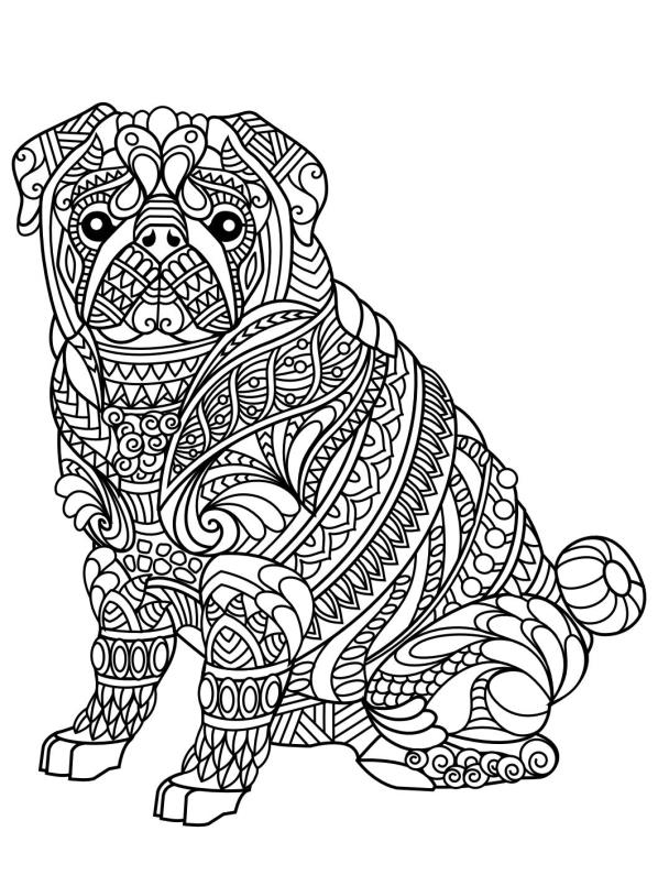 also  additionally  together with  furthermore  also  moreover  besides  moreover  moreover  together with . on sun coloring pages printable