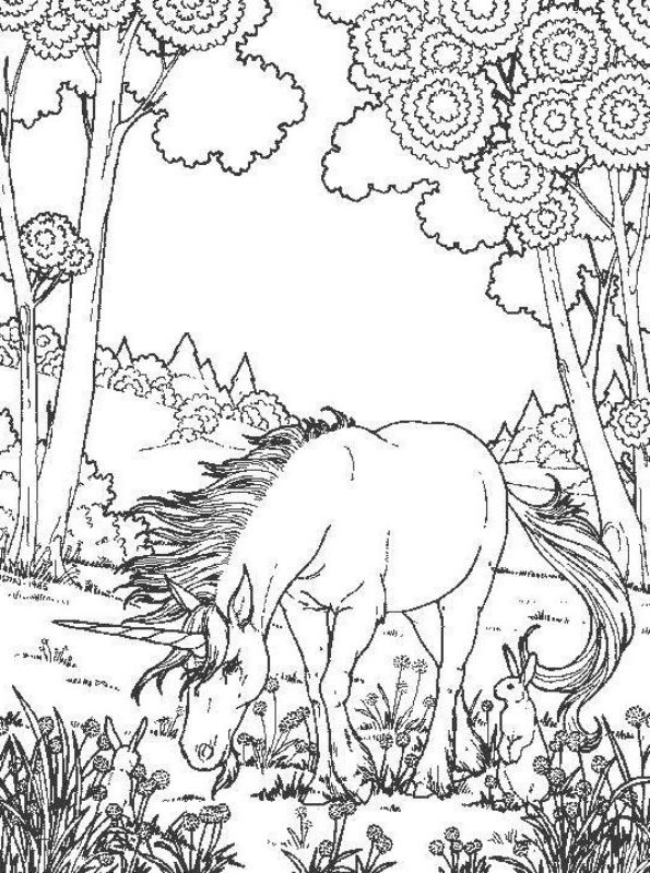 moreover connect the dots e14405051651201 together with horse coloring pics good you can print VSWj together with  as well  also  additionally  further  likewise  also  also . on complicated coloring pages for adults