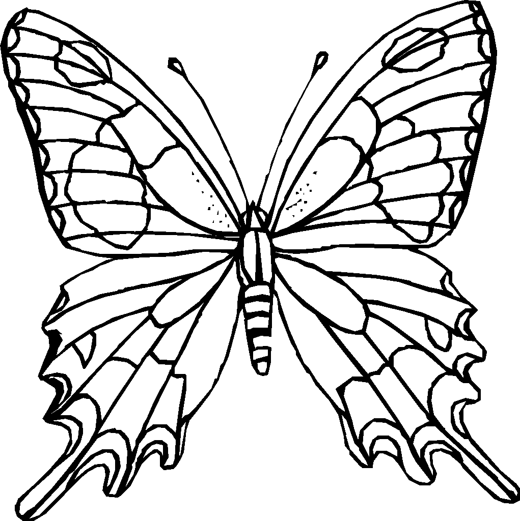 kleurplaten van insecten
