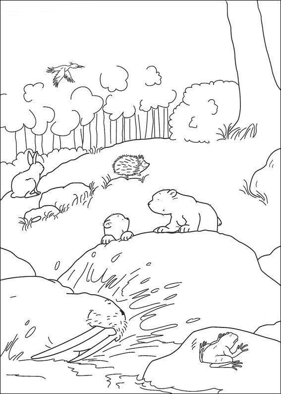 kleurplaten en zo 187 kleurplaten lars de kleine ijsbeer
