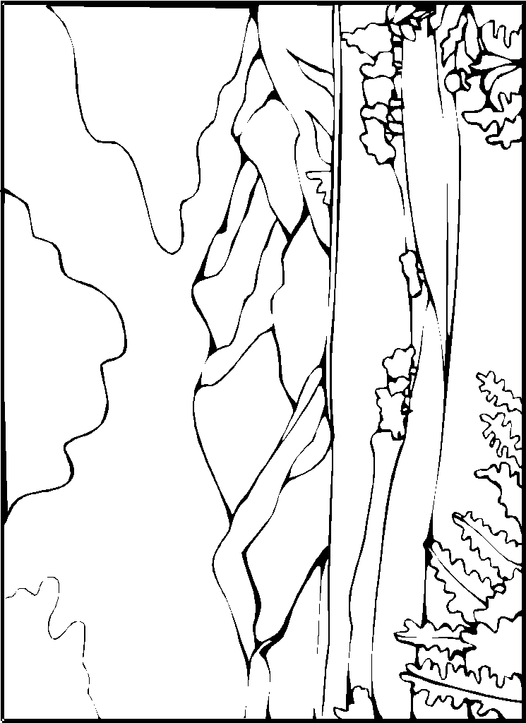 Moon And Stars Coloring Pages Printable 20 as well  likewise dragon 2Bcity 2B  2Bdragons in addition  also waterfall clipart RidBqqdi9 together with  likewise  in addition 7b406958a709024020968344ab5d1ee7 in addition chute d eau 16 also Wisteria Flower Wallpaper 2 besides Walking on Beach. on coloring pages of a waterfall