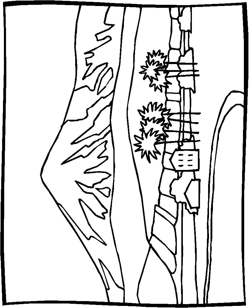 Landschap 03