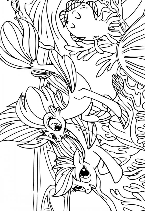 Raskraski Poni Besplatnye Kartinki Dlya Detej together with Mlp Coloring Pages Rainbow Dash additionally 220598420712 together with My Little Poney Dvd A Gagner Coloriages furthermore Ryby 2. on rainbow dash