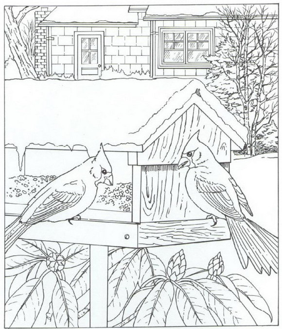 Free Coloring Pages Of House Of Nature
