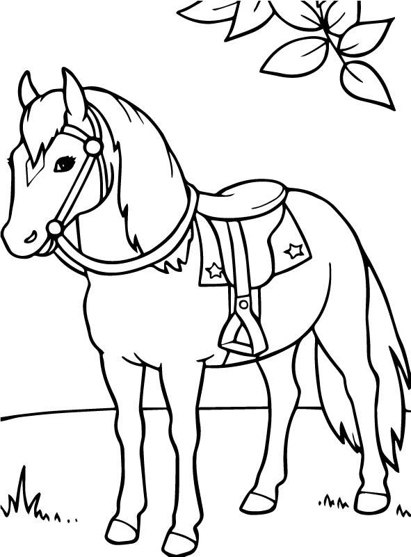 kleurplaten en zo 187 kleurplaten paarden